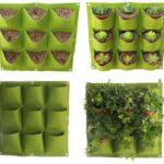 אדניות לגידול צמחים הנתלות על הקיר