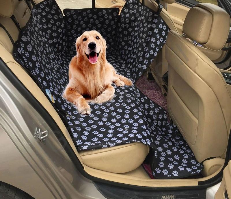 כיסוי לרכב נגד שערות הכלב